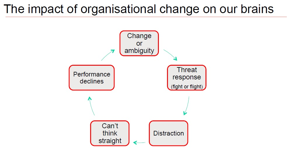 Organizational change impact on our brains